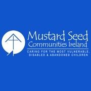 Doireann Dalton's Marathon for Mustard Seed avatar