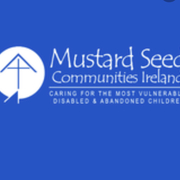 Aisling McGuinness's marathon for mustard seed avatar
