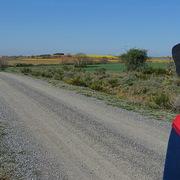 Camino de Santiago for Trinity VDP avatar