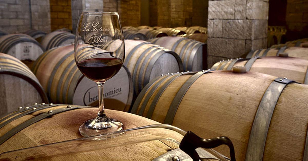 Dégustation de vins - Val D'Argan