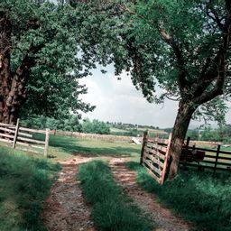 Cover photo for Guaranteed Farm Loans