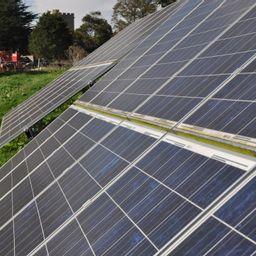 Cover photo for Rural Energy for America Program