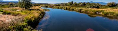 Cover photo for Agricultural Conservation Easement Program: Wetland Reserve Easements