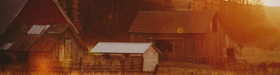 Cover photo for Massachusetts Agricultural Preservation Restriction Program