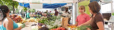 Cover photo for Massachusetts Food Ventures Program