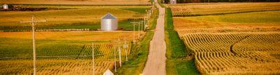 Cover photo for Nebraska Investment Finance Authority: Beginning Farmer and Rancher Program