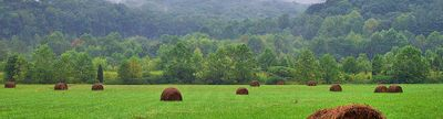 Cover photo for Southern Ohio Pasture Improvement Funding