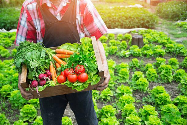 Image of Organic Farmer