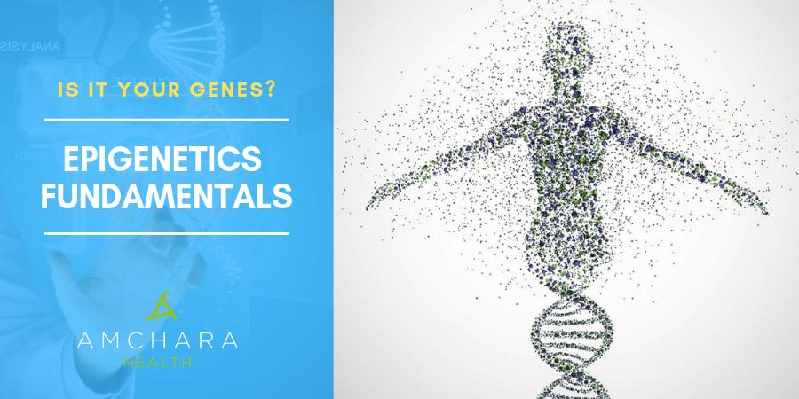 Epigenetics-Fundamentals