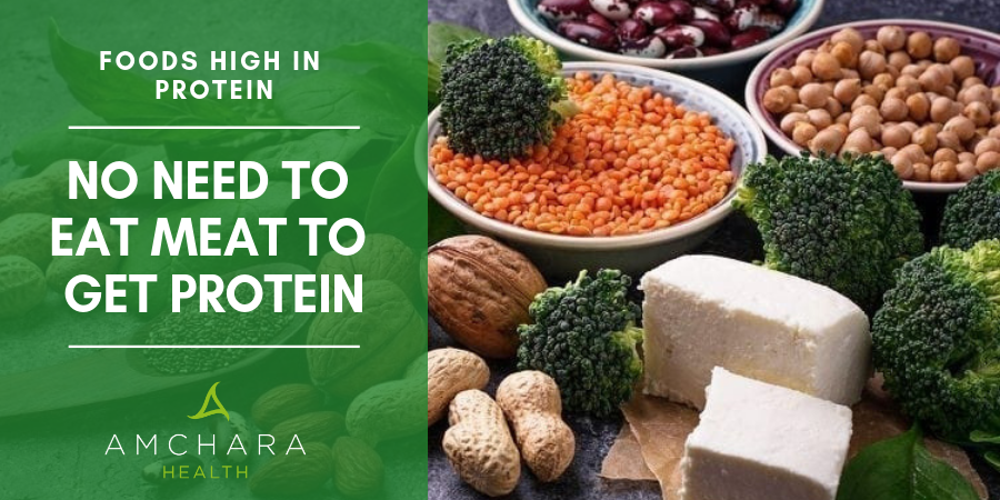 Get-Your-Protein-From-Plants-Not-Animals-2
