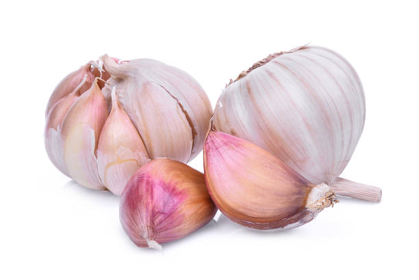 candida and garlic