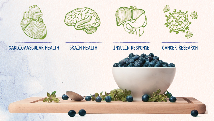 The Health Benefits of Blueberries Image