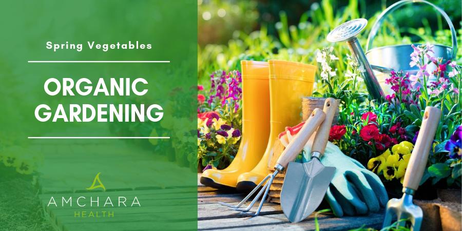 Organic-Gardening Image