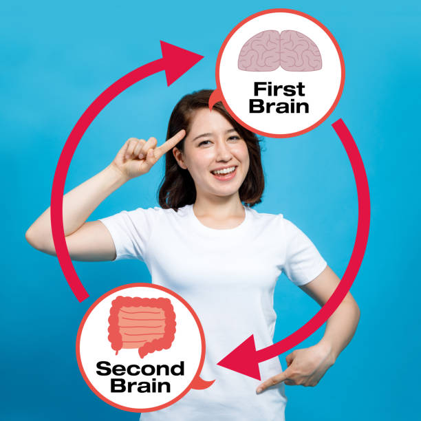 Our Gut - Our Second Brain