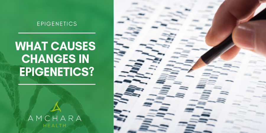 What causes changes in epigenetics?