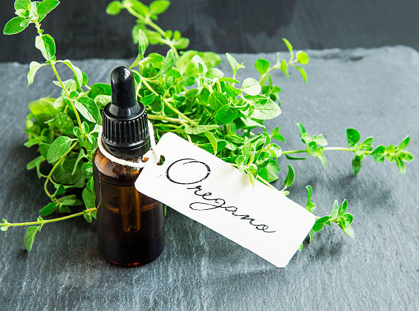Oregano Oil Bottle with fresh oregano