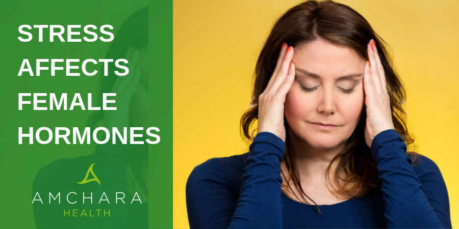 stress affects female hormone balance