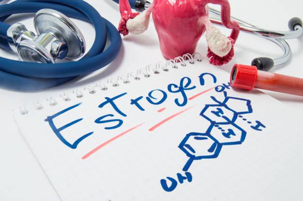 Oestrogen-Estrogen