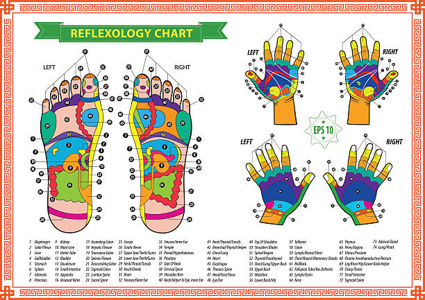 foot-and-hand-Reflexology
