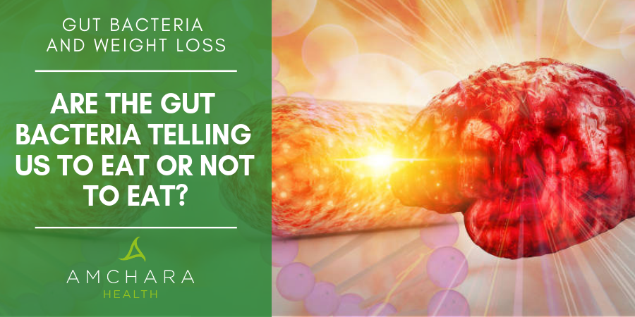 Are the Gut Bacteria Telling Us to Eat or Not to Eat