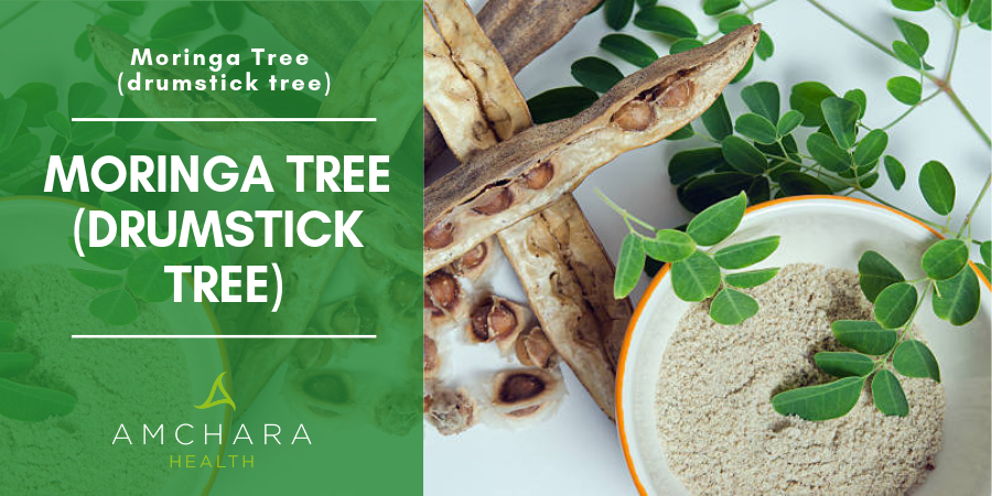 92 Nutrients and 46 Antioxidants In One Tree Moringa Oleifera