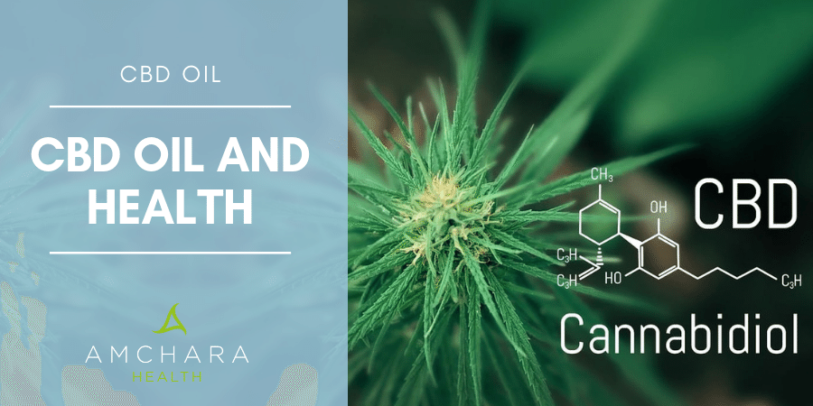 What's The Fuss About CBD?