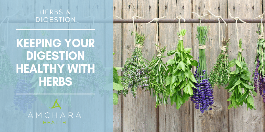 Herbs To Support Your Digestive Health.