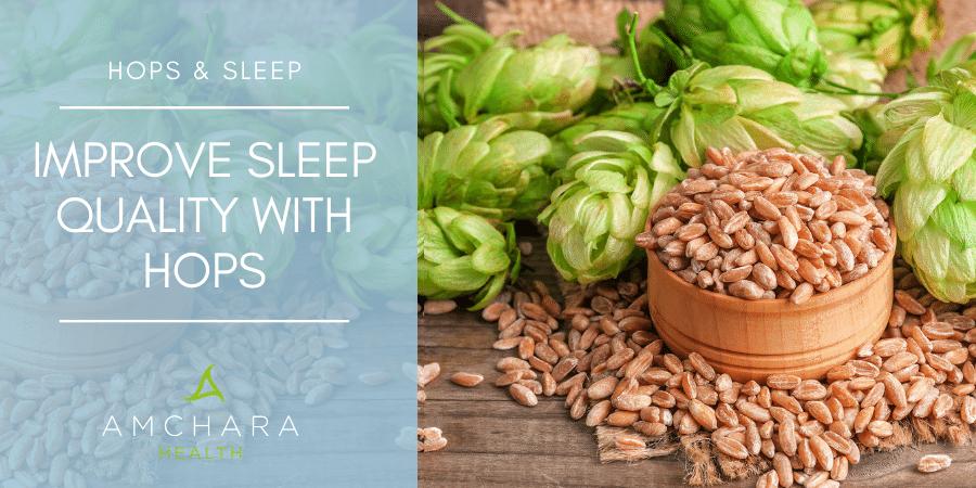 How Hops Help You To Sleep
