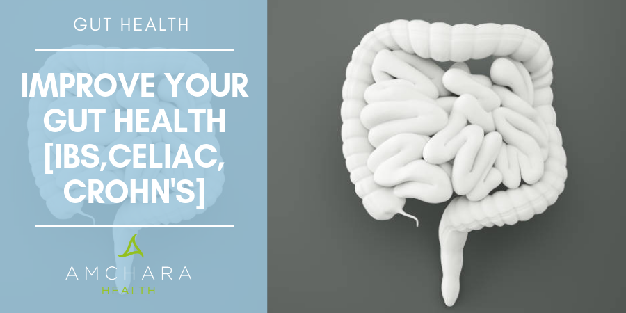 Amchara's Approach to Gut Health