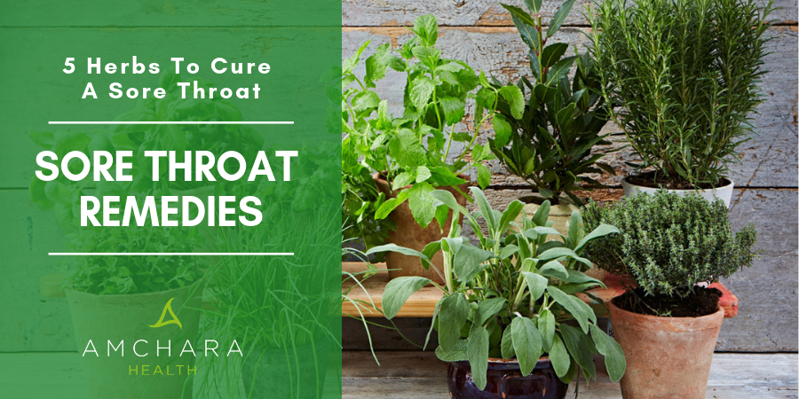 5 Herbs To Cure A Sore Throat