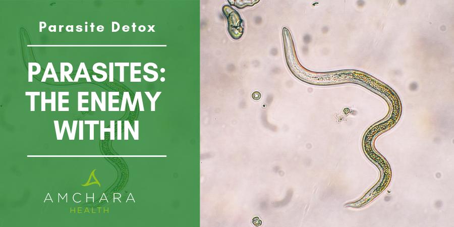 Time for a Parasite Detox?