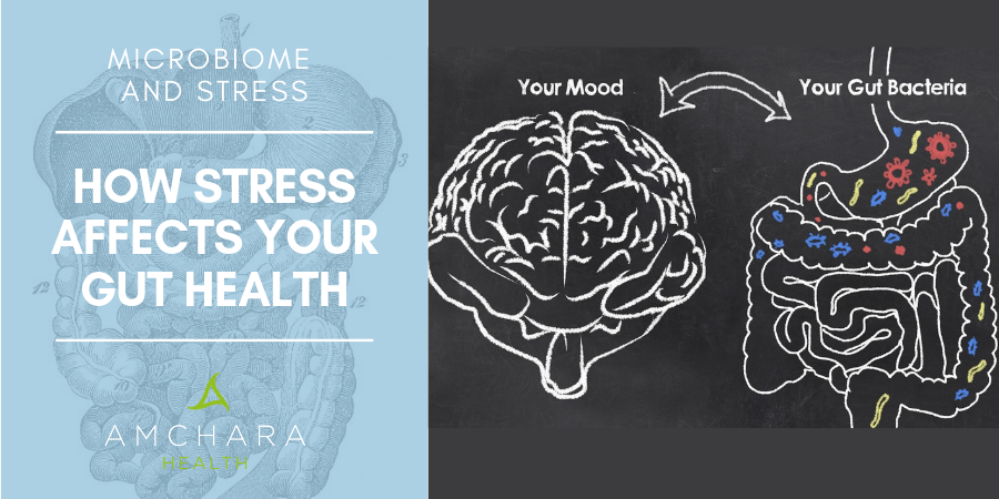 Microbiome and Stress