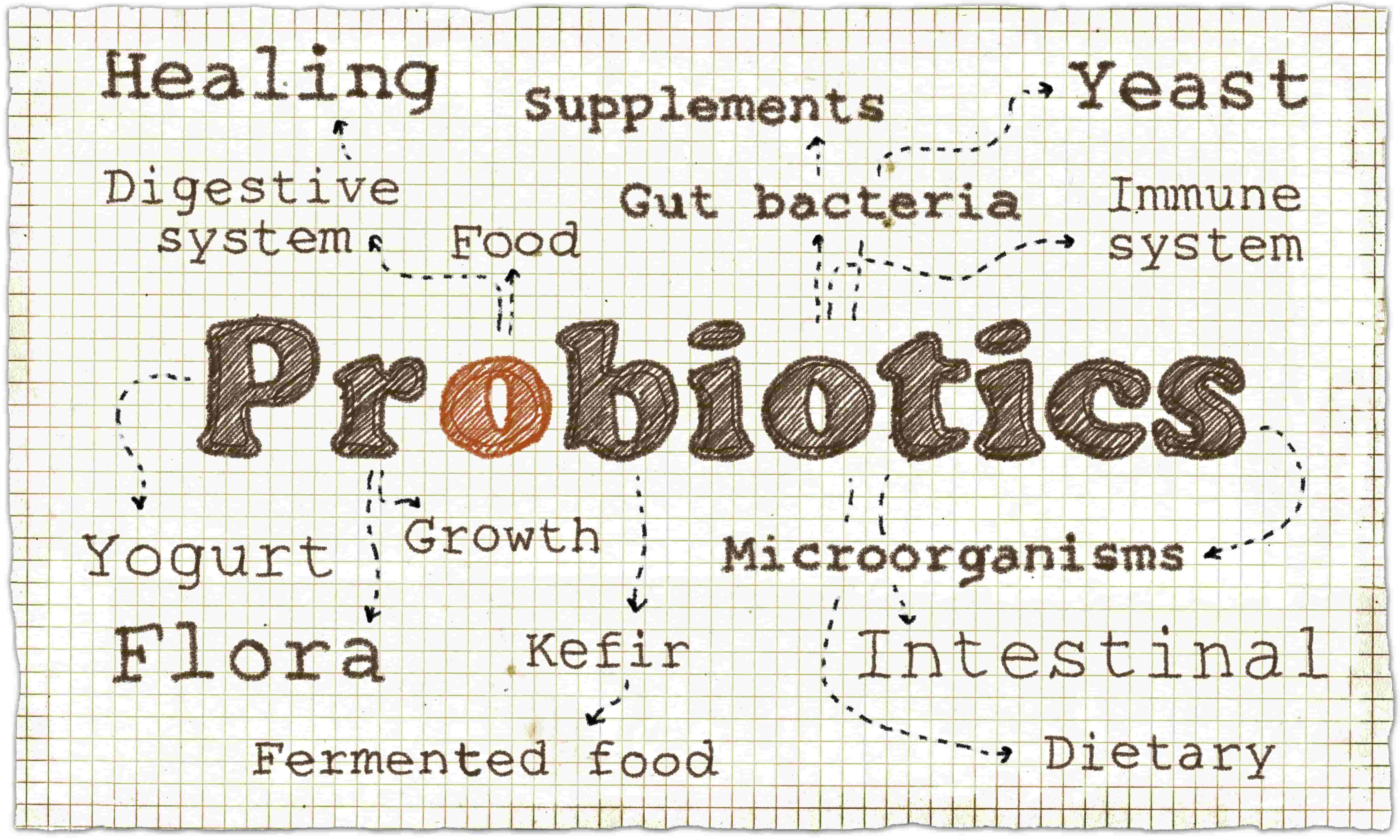 Probiotics - Another Tool to Enhance your Weight-Loss Programme