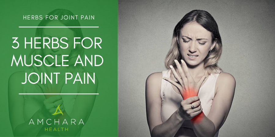 3 Herbs For Joint Pain You Can't Do Without