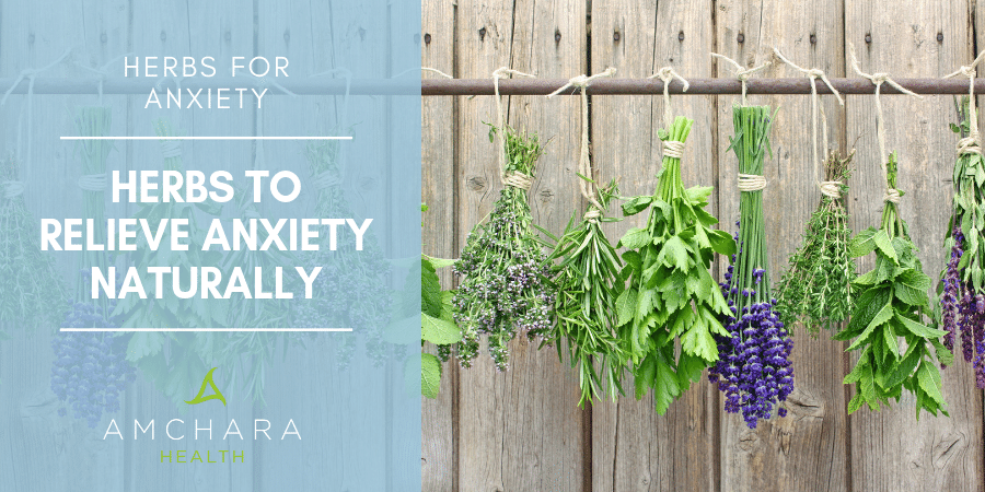 Top 8 Herbs For Anxiety