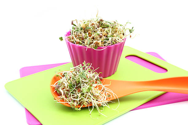 Go Sprout Yourself!