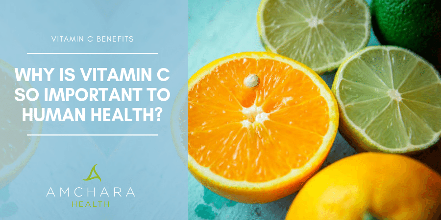 Where Would We Be Without Vitamin C?