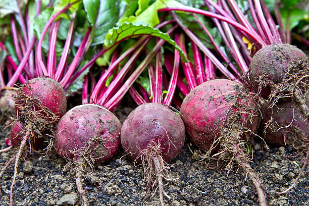 You can't beat beets!
