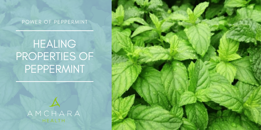 The power of peppermint