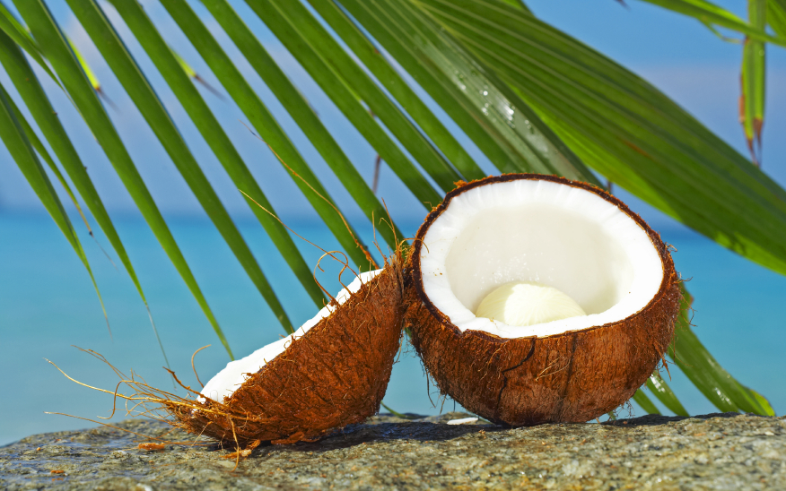 Coconut-and-palm-leaves
