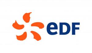 logo : GROUPE EDF