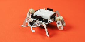 beetlebot top