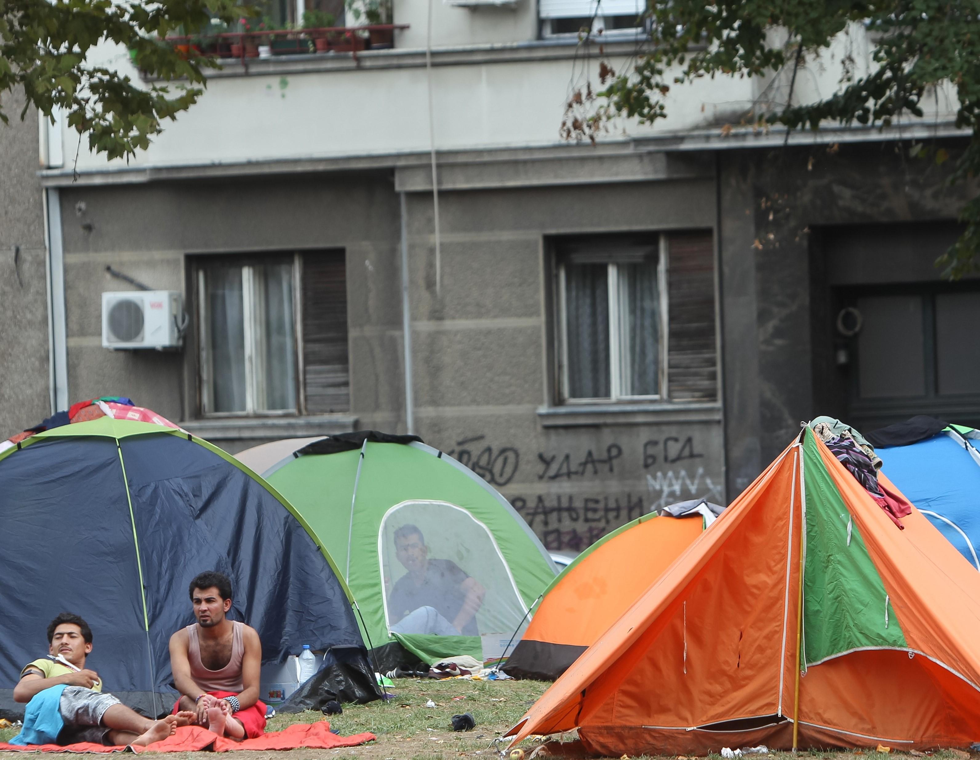 Anbud365: Klager på kontraktstildeling rammer flyktningene