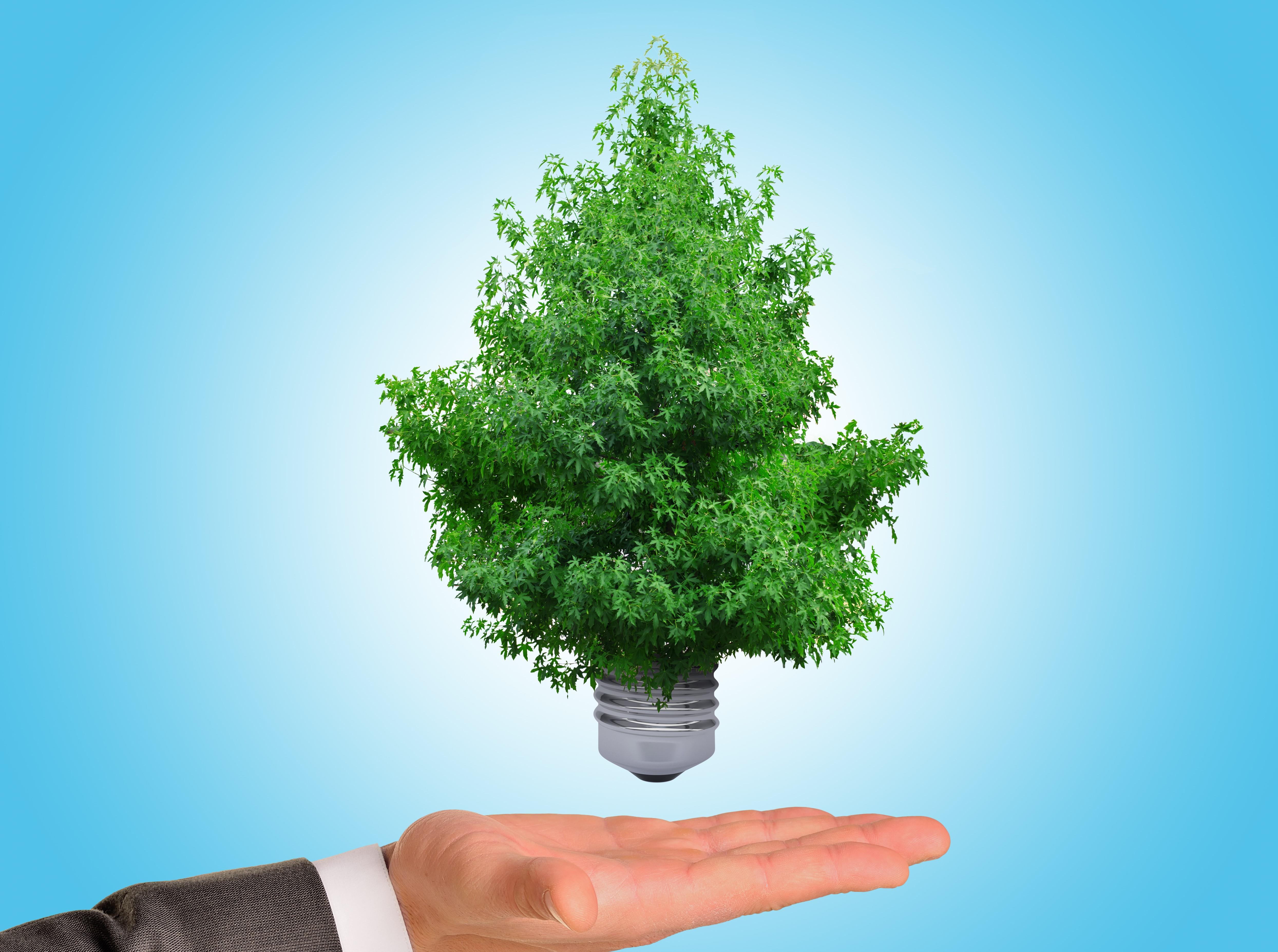 Anbud365: Tid for en formidabel kompetansesatsing for å få fart på grønne innkjøp