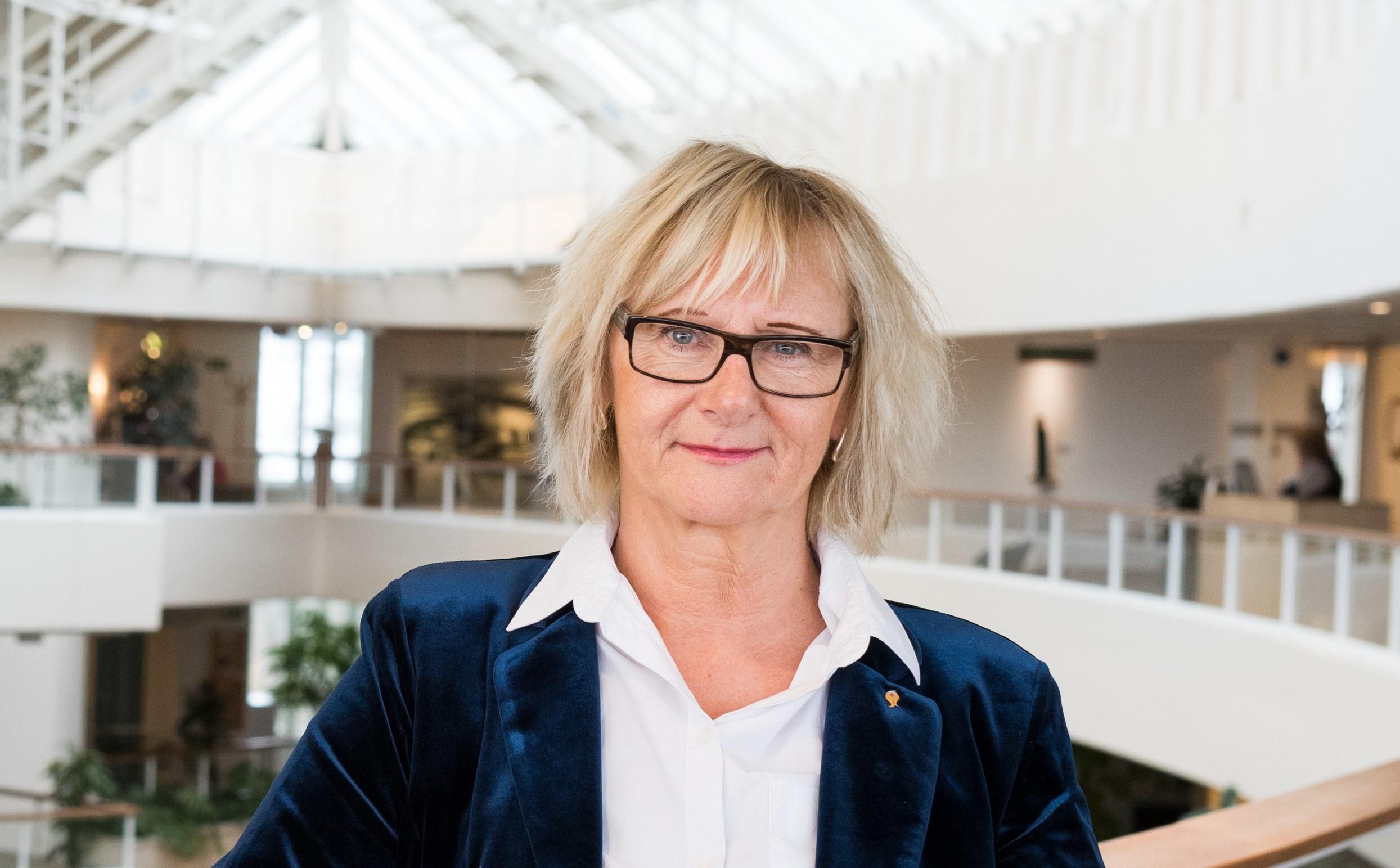 Anbud365: Vil ha norske regelgrenser innført i svensk anskaffelses-lovgivning
