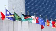 Anbud365: Anskaffelsesfaglig bruk av boikott – hvor i verden skal man ramme
