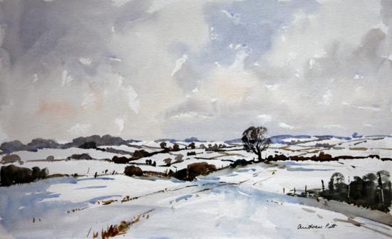Winter Fields near Ringstead