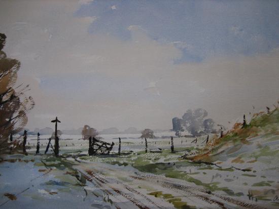 Frost in the Fields