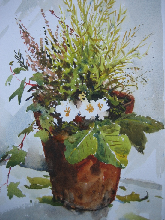 Early Spring Plant Pot