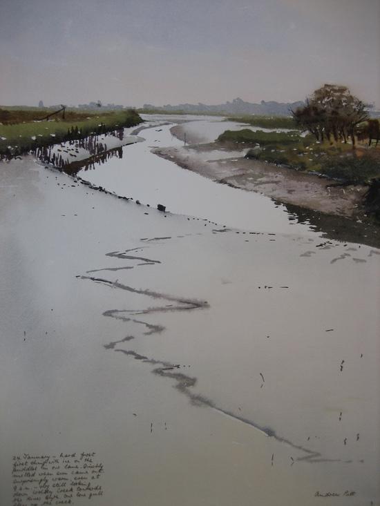 Low Tide - Wolsey Creek